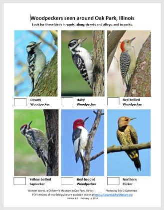 WoodpeckersCHECKLIST
