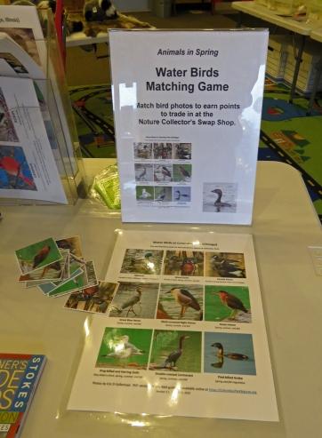 WaterBirdsMatchingGame19-03-15_2792
